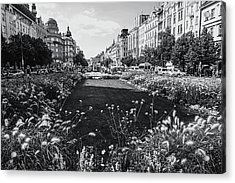 Acrylic Print featuring the photograph Summer Prague. Black And White by Jenny Rainbow