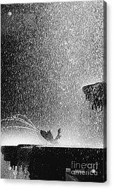 Summer Rain Acrylic Print by Hideaki Sakurai