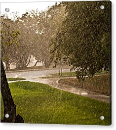 Summer Rain Acrylic Print by Robert Harshman