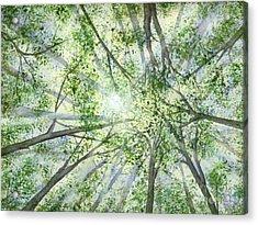 Summer Rays Acrylic Print