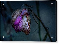 Summer Remembrance Acrylic Print