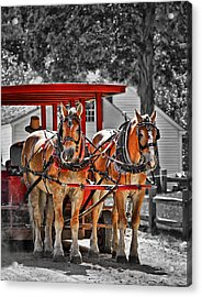 Summer Ride Acrylic Print by Evelina Kremsdorf