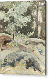 Summer Rocky Landscape Acrylic Print