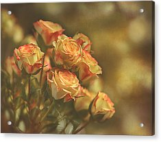 Summer Roses #2 Acrylic Print