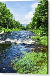 Summer Scene Rangeley Maine  -70742 Acrylic Print