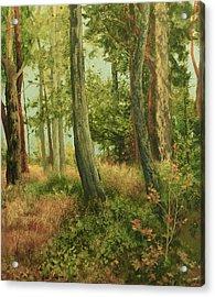 Summer, Sidney Spit Acrylic Print