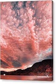 Summer Skies Acrylic Print by Tara Turner
