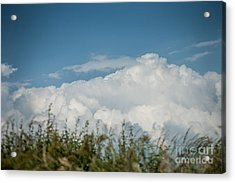 Acrylic Print featuring the photograph Summer Sky by Jan Bickerton