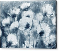 Summer Snow Acrylic Print by Elena Vedernikova