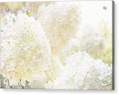 Summer Snowballs Acrylic Print