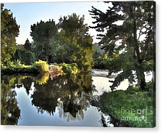 Acrylic Print featuring the photograph Summer Still by Betsy Zimmerli