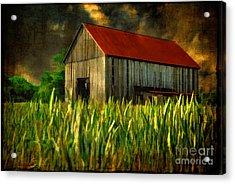 Summer Storm Acrylic Print by Lois Bryan