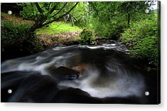 Acrylic Print featuring the photograph Summer Stream by Tim Nichols