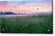 Summer Sunrise 2015 Acrylic Print by Bill Wakeley