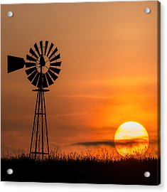 Summer Sun Square Acrylic Print by Bill Wakeley