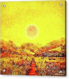 Acrylic Print featuring the digital art Summer Sunset Field - Trail In Marin California by Joel Bruce Wallach