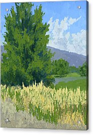 Summer Tree Acrylic Print