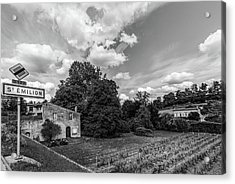 Summer Wine Country In Mono Acrylic Print