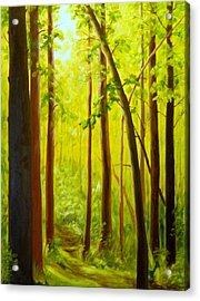 Summer Woods Acrylic Print