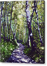 Summer Woods Acrylic Print by Jerry Kirk