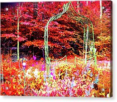 Acrylic Print featuring the photograph Summerhouse Arch by Susan Carella