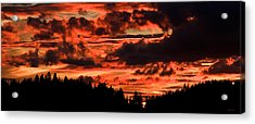 Summer's Crimson Fire Acrylic Print