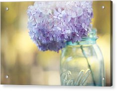 Summer's End Acrylic Print by Amy Tyler