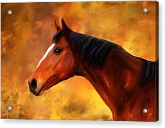 Summers End Quarter Horse Painting Acrylic Print