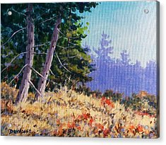 Summers End Acrylic Print by Richard De Wolfe