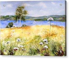 Summertime Birches Acrylic Print