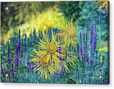 Summertime Acrylic Print