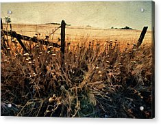 Summertime Country Fence Acrylic Print