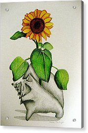 Summertime Acrylic Print by Marita McVeigh
