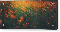 Acrylic Print featuring the photograph Summertime by Shane Holsclaw