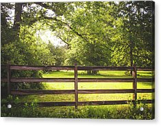 Acrylic Print featuring the photograph Summertime Sunshine by Shelby Young