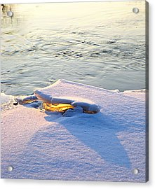 Sun And Ice Acrylic Print by Robert Pearson