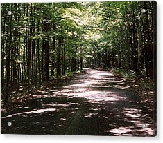 Acrylic Print featuring the photograph Sun And Shadow Road In Summer  C3pdl by Lyle Crump