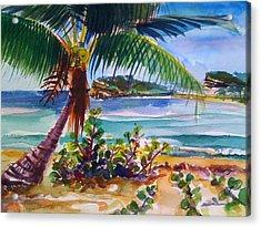 Sun Bay, Vieques, Puerto Rico Acrylic Print by Barbara Richert