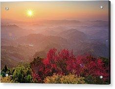 Sun Burst, Cherry Blossoms And Mountain Layers Acrylic Print by Samyaoo