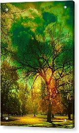 Sun Daggers Acrylic Print by Kat Besthorn