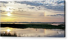 Acrylic Print featuring the photograph Sun Dog And Herons by Rob Graham