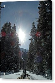 Sun Dogs Acrylic Print by Mark Lehar