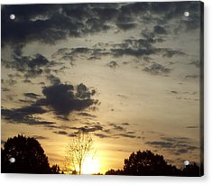 Acrylic Print featuring the photograph Sun Down by Robin Coaker