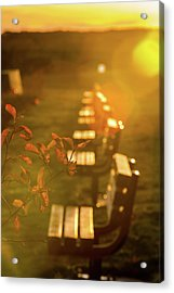 Sun Drenched Bench Acrylic Print