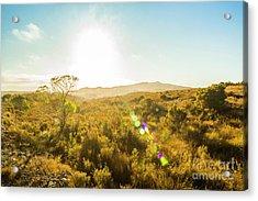 Sun Flare Prairie  Acrylic Print