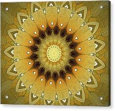 Sun Kaleidoscope Acrylic Print