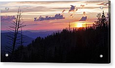 Sun Over Cedar Acrylic Print by Chad Dutson
