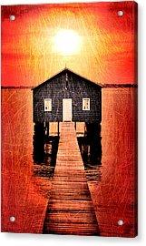 Sun Scars Acrylic Print by Az Jackson