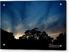 Sun Set Acrylic Print by Paul SEQUENCE Ferguson             sequence dot net