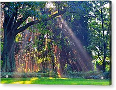Sun Shower B Acrylic Print by Peter  McIntosh